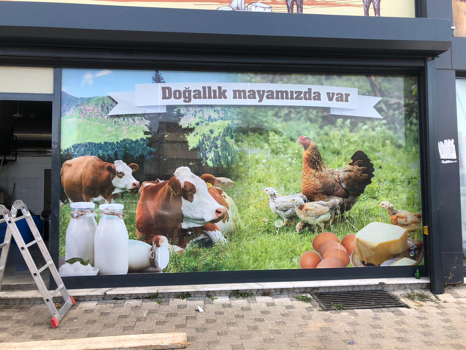 maya süt cam one way vanvey reklam